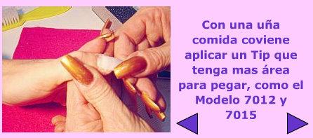 tipsov_6.jpg
